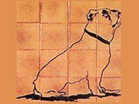Residencia Canina Do Pazo