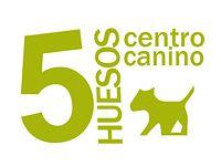 Centro de Adiestramiento Canino Cinco Huesos