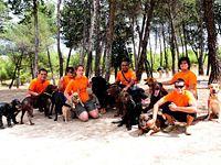 PuLyGaR (Servicio Integral de Mascotas)