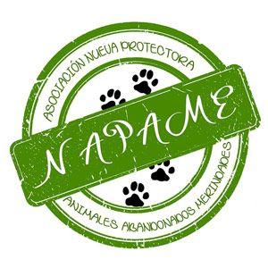 NAPAME - Nueva protectora Animales Merindades