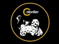 Cotonlier