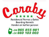 Residencia Canina Caraby