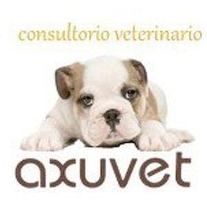 Axuvet Consultorio Veterinario