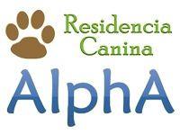Residencia canina Alpha