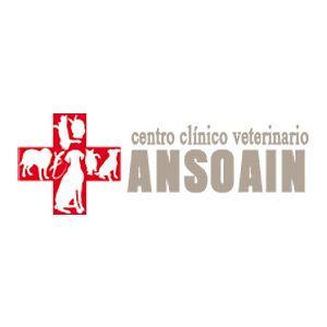 Centro Clínico Veterinario Ansoain