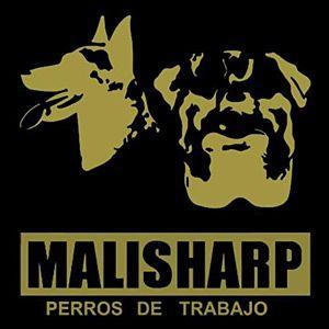 Escuela canina Malisharp