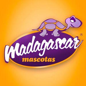 Hotel para Mascotas Madagascar Mascotas