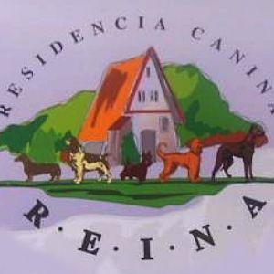Residencia Canina Reina
