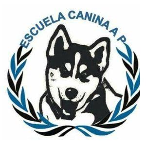 Escuela Canina AP - Adopciones Positivas